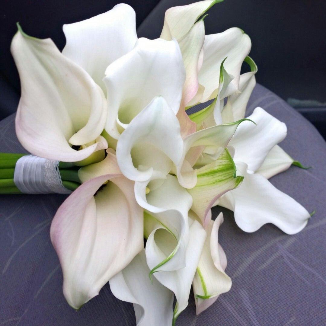 Букет невесты лилии калл цена